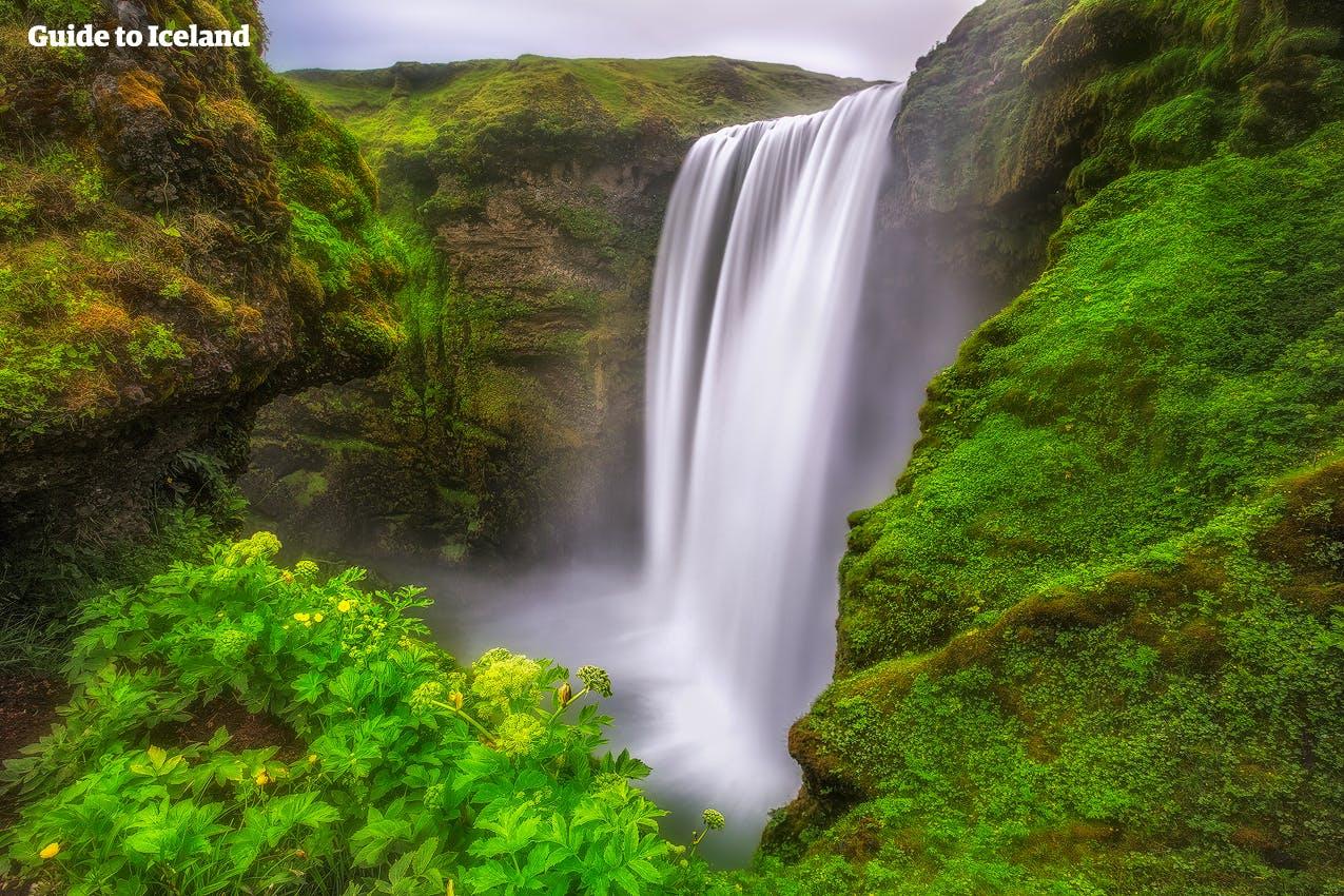น้ำตกสโกกาฟอสส์บนชายฝั่งทางใต้ของไอซ์แลนด์