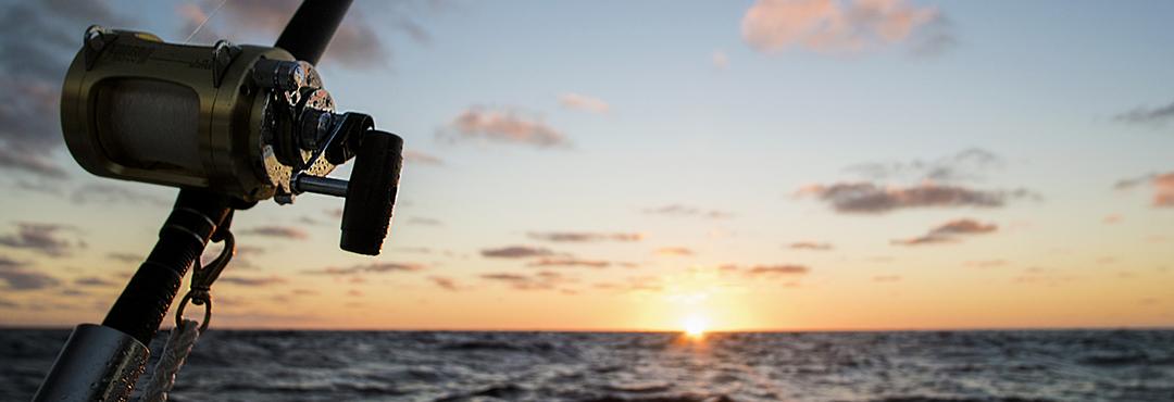Поездки на рыбалку